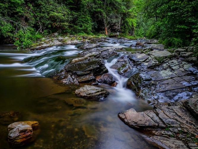 Ron Blanchard        Paint Creek, Tennes