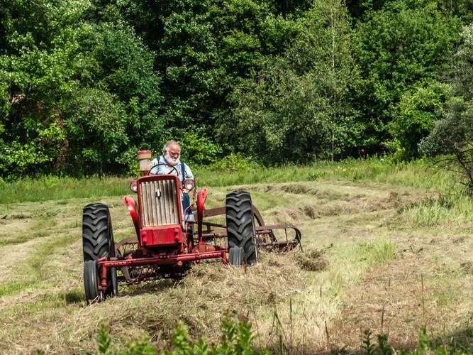 Making Hay_21_21.jpg