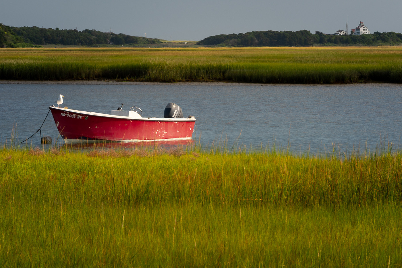Red Boat_21 Larry Gleit