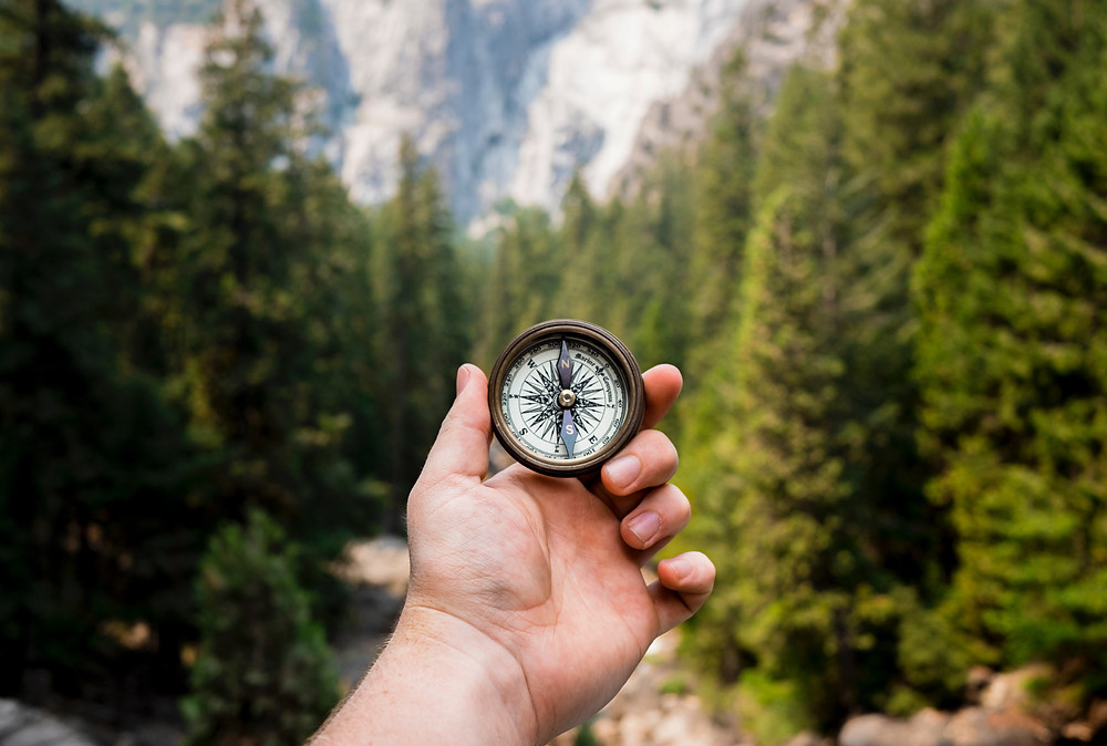 A hand holding a compass with a backdrop of pine tress and mountains