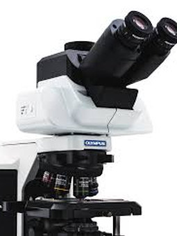 Live cell LED Imaging System - Olympus
