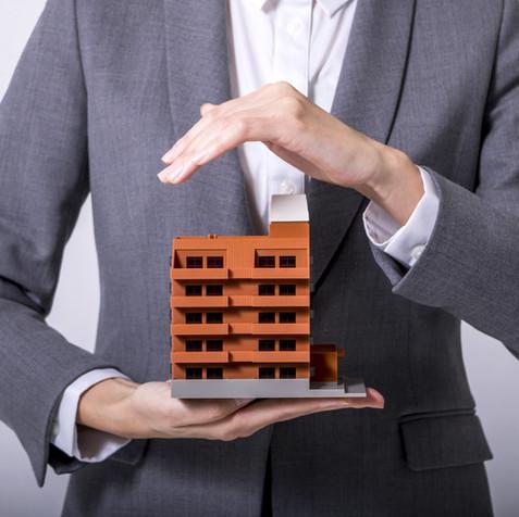 Insurance and Reinsurance Companies