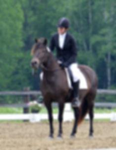 Contact Jenny Jelen Equestrian