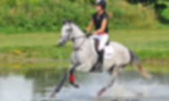 Jenny Jelen and Big Nickel in the water at Bronte Creek