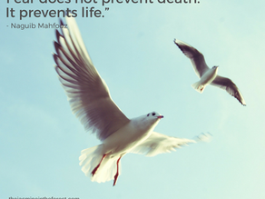 Fear does not prevent death. It prevents life.