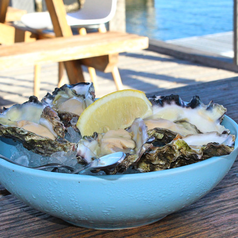 Hamiltons Oysters Tuncurry