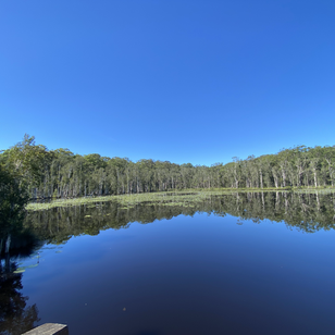 Urunga Wetlands Walk NSW North Coast