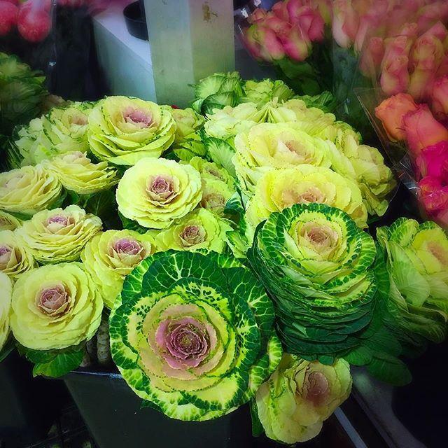 Flower Market Cabramatta