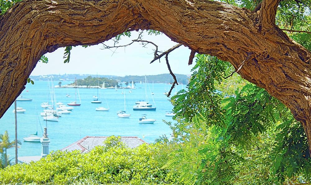 Elizabeth Bay Sydney