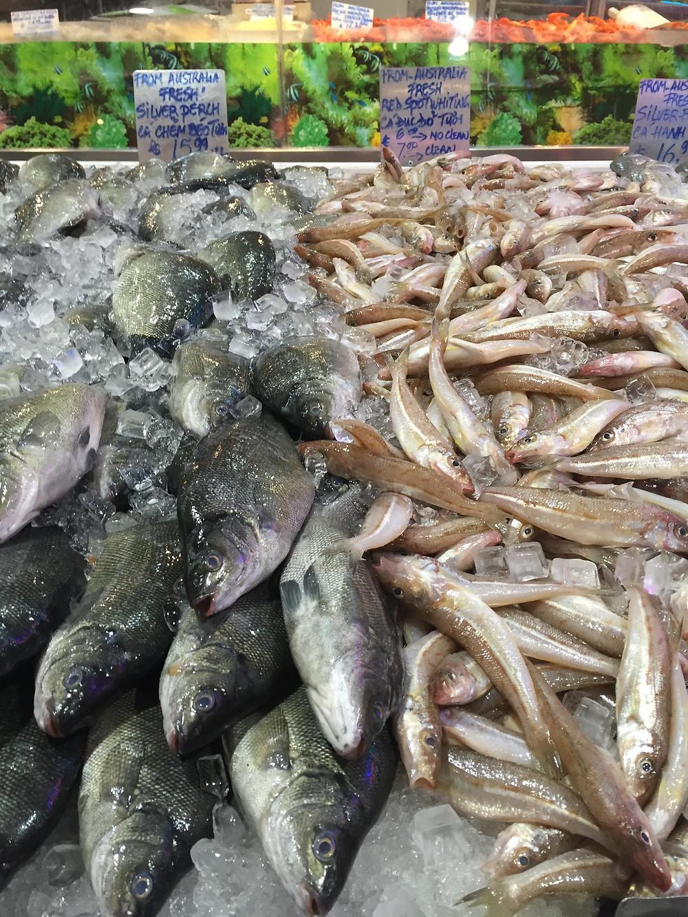 Cabramatta Fish Market