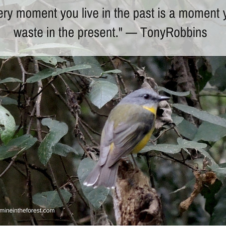 Every Moment you Live in the Past is a Moment you Waste in the Present.