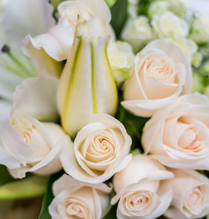 Flowers online sydney