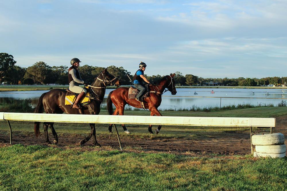 Tuncurry Race Track