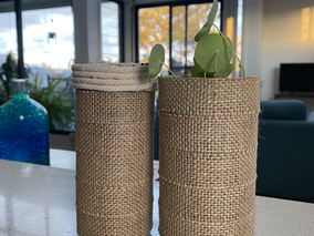 Turn Your Plastic Bottles Into Self Watering Plant Containers