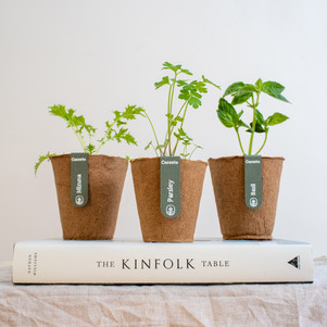 The Sydney start-up transforming modern gardening with veganic plants