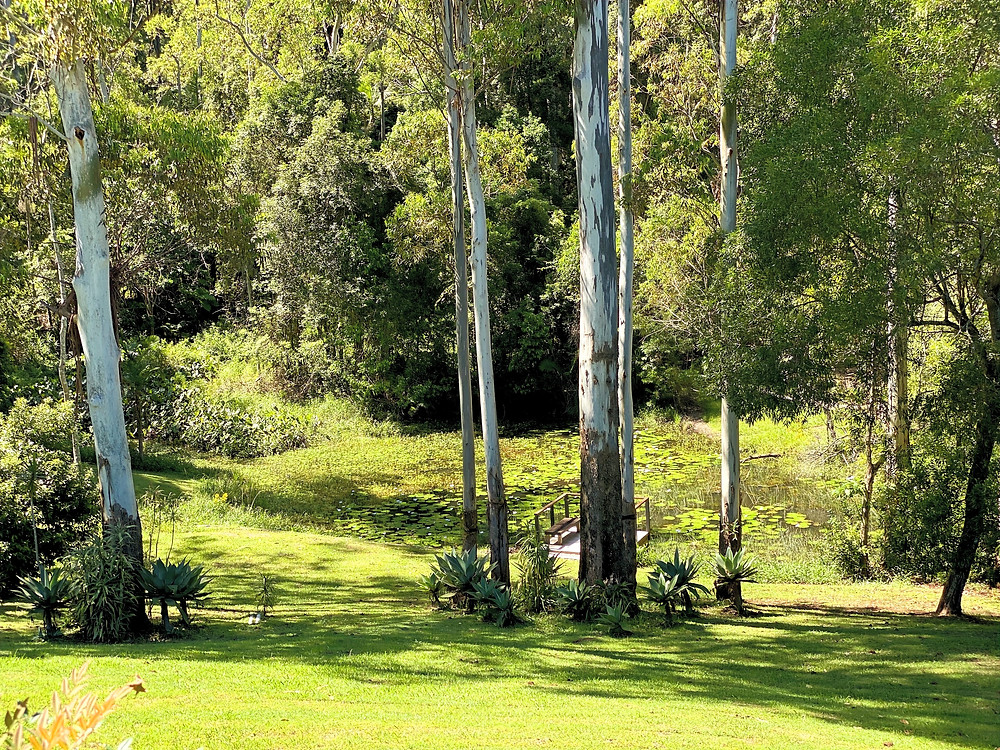 Airbnb Boambee NSW