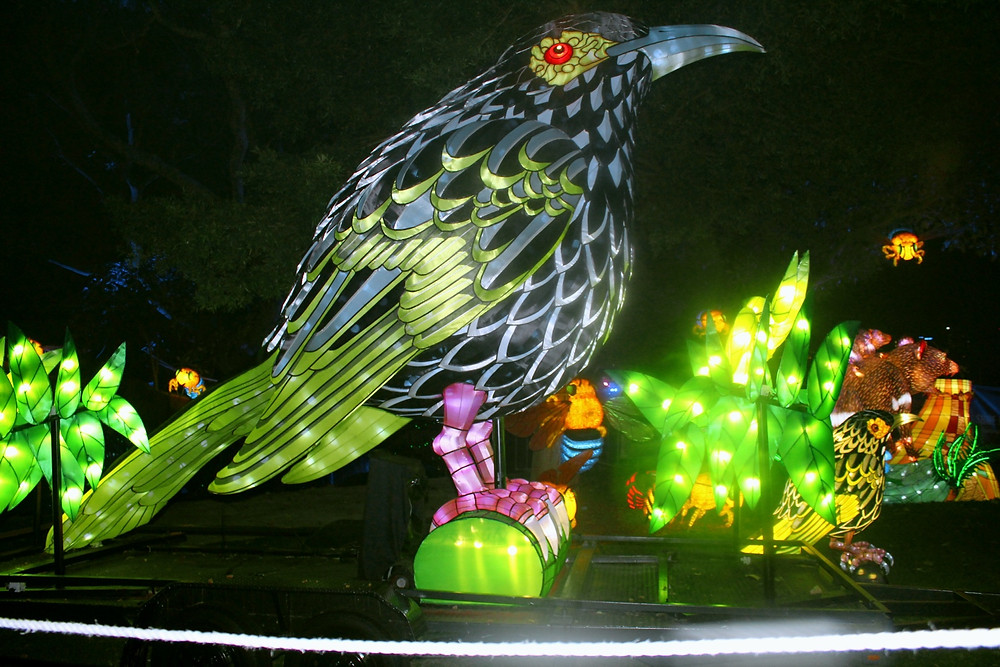 Vivid Taronga Zoo