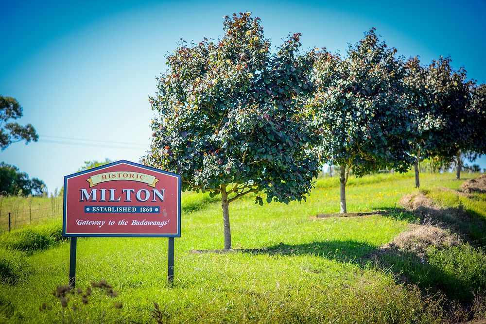 Milton Food and Wine Festival NSW