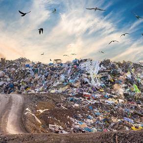 memobottle Helping the War on Waste