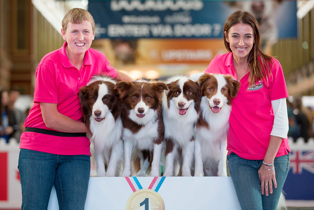 Sydney Dog Lovers Show 2019