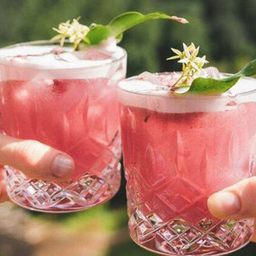 Gin Palooza is returning to Sydney from Friday 4 September (Postponed)
