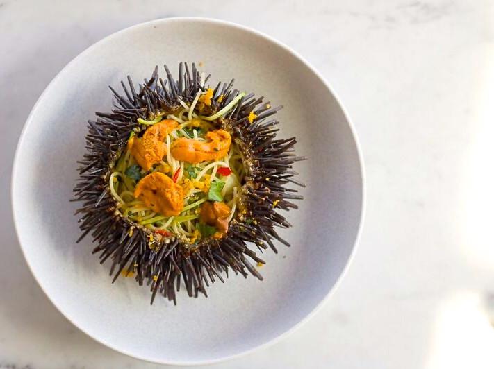 Sea urchin at love.fish