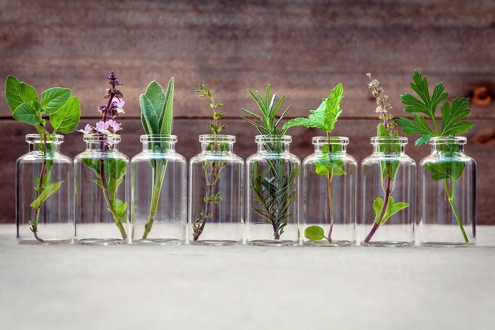 Ways to grow herbs