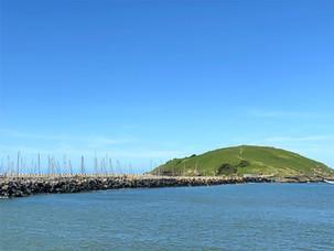 Muttonbird Island Coffs Harbour