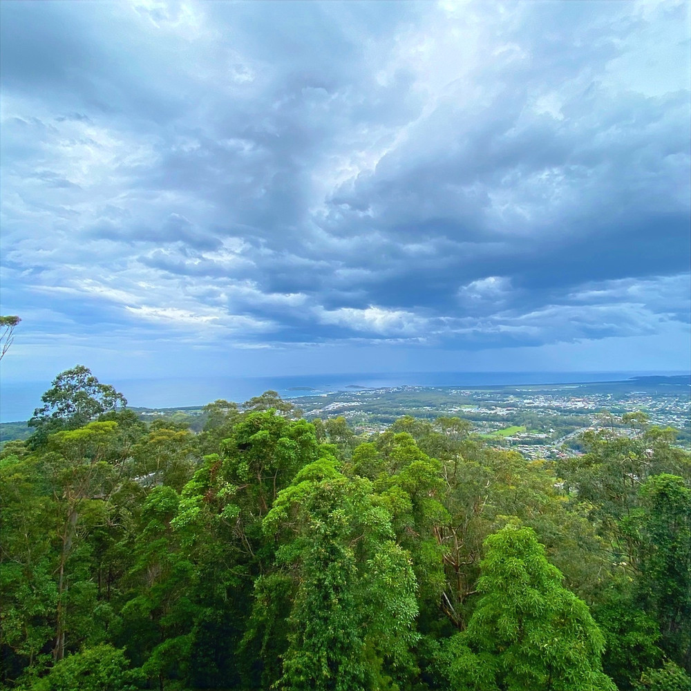 Coffs Harbour Sealy Lookout
