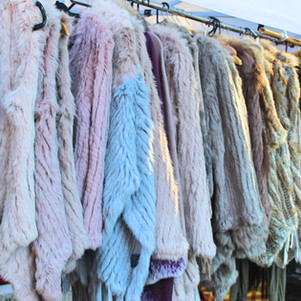 Things to do in Sydney: Potts Point Market