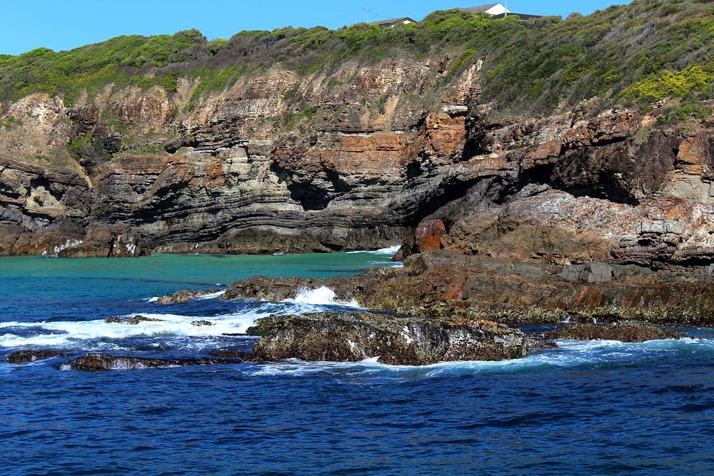Cape Hawke