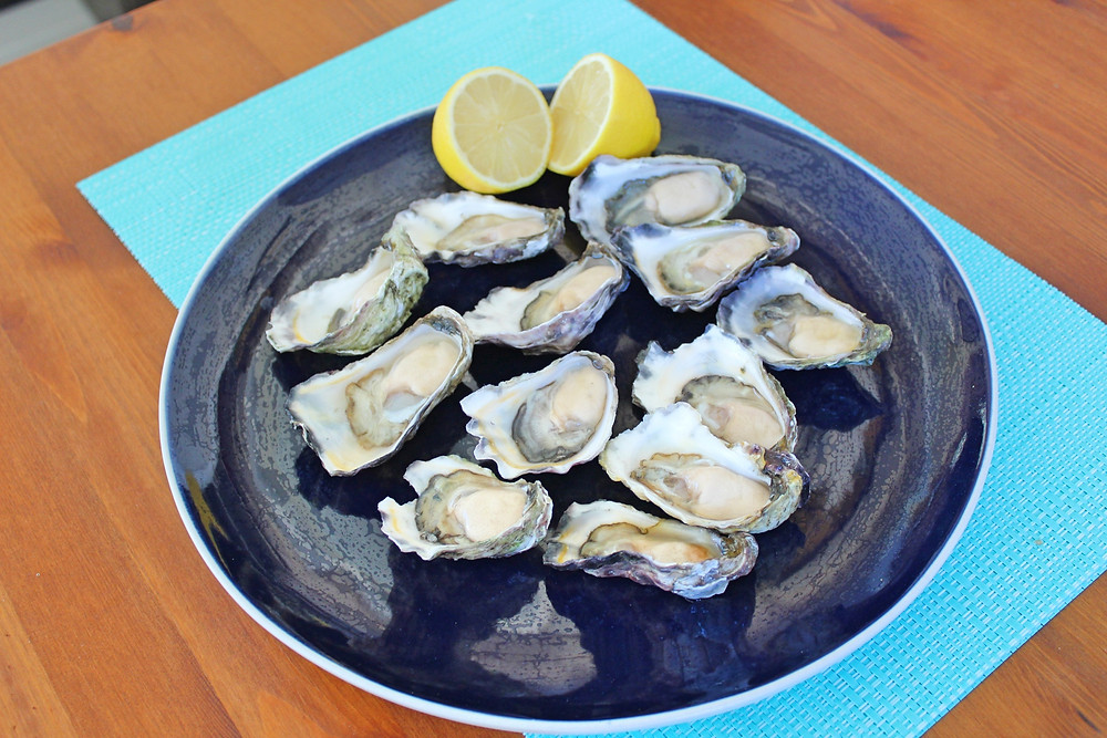 Oysters Forster