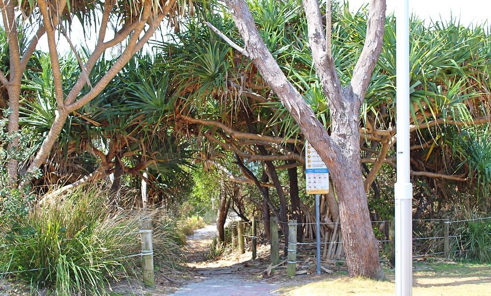 Beach entry Byron Bay