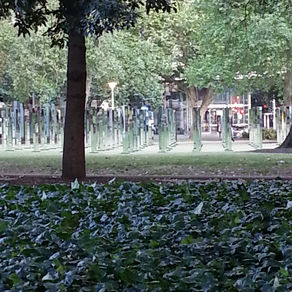 Hyde Park - Field