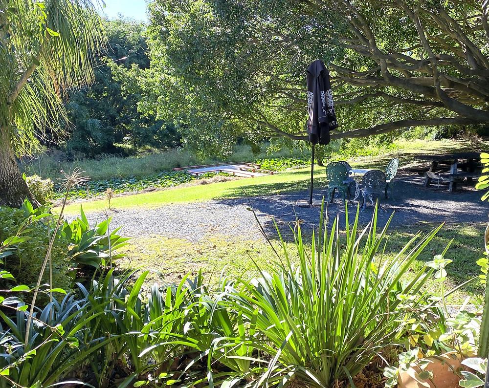 Garden Mania Boambee Pond