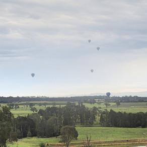 Travel Review: The Sebel Kirkton Park Hunter Valley NSW