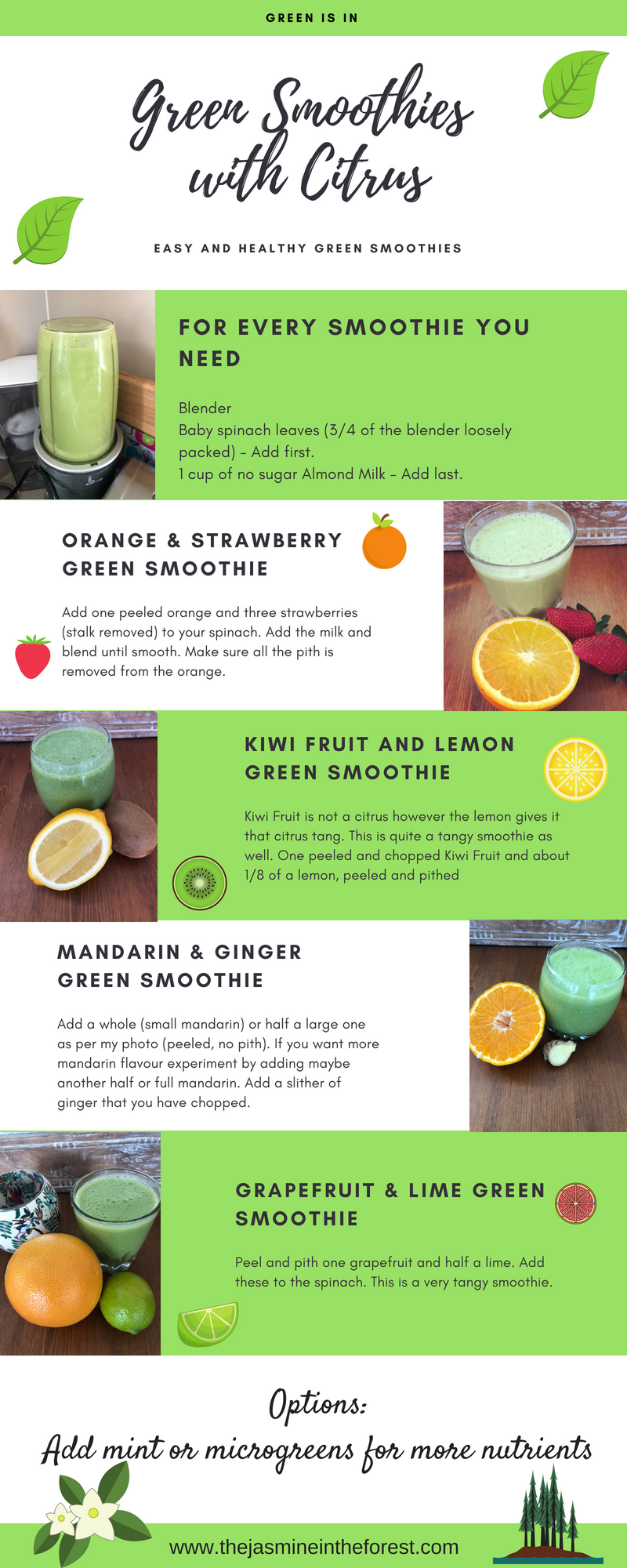 Green Smoothie Infographic