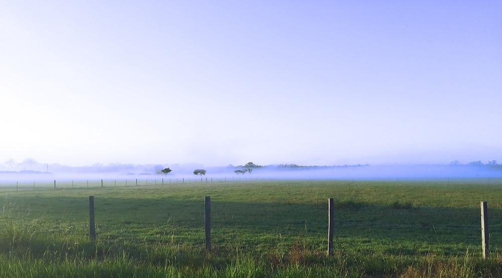 Nabiac Manning Valley NSW