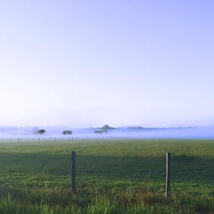 Nabiac Manning Valley