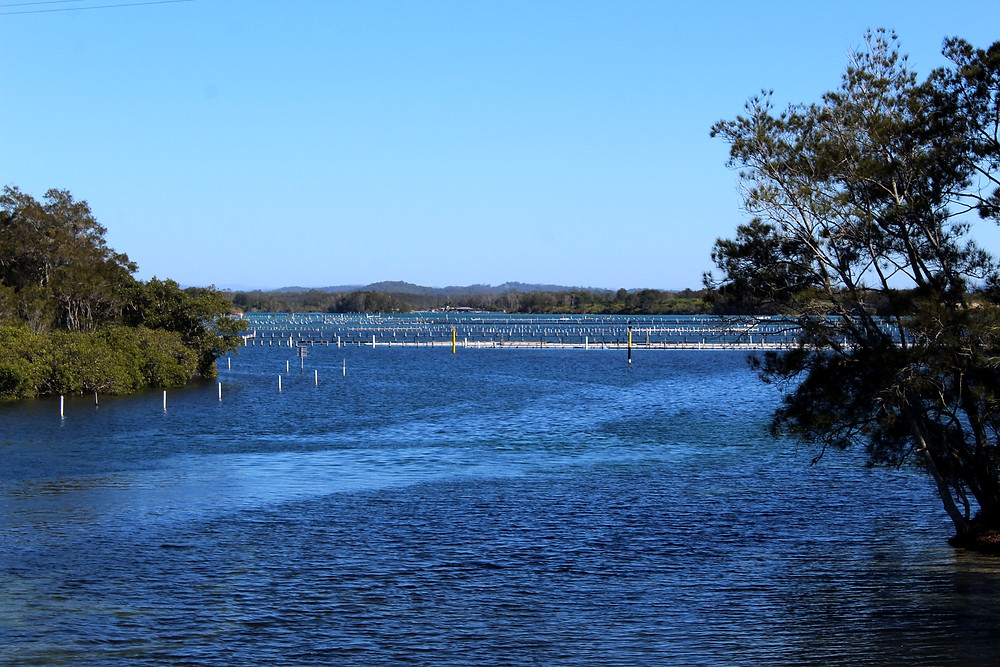 Forster Oyster Farms
