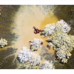 "Aerial photographer –Hulia Bozinaugural solo photographic exhibition""Postcard from Australia"