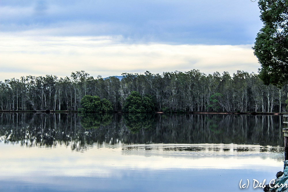 Darawank Mid North Coast NSW