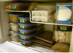 home freezer storage ideas