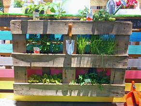 Urban Gardening Just Got Easy
