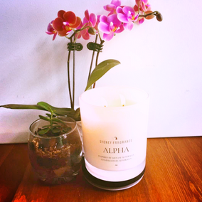 The Sense of Smell Has the Power to Evoke Emotion: Try Sydney Fragrances Candles