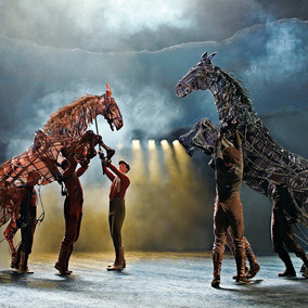 Theatre Review | War Horse