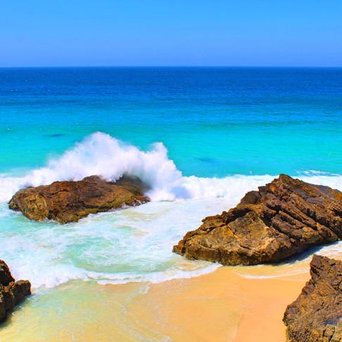 Burgess Beach Forster