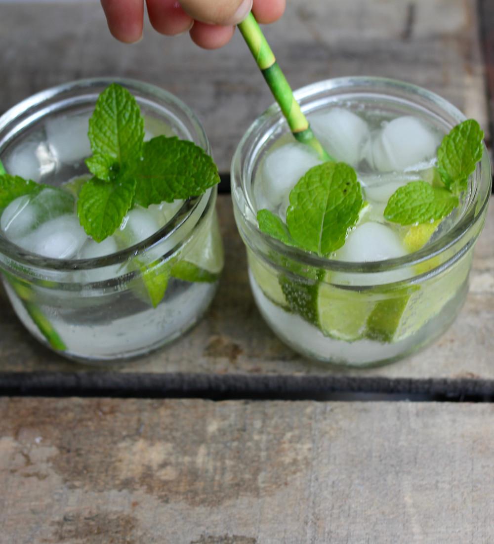 Sugar free Gin and Tonic