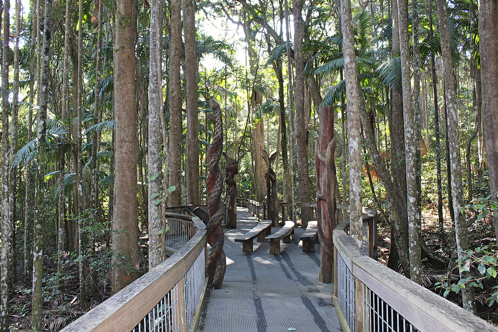 sea acres raiforest port macquarie