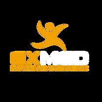 Yellow, White Logo (No Background).png